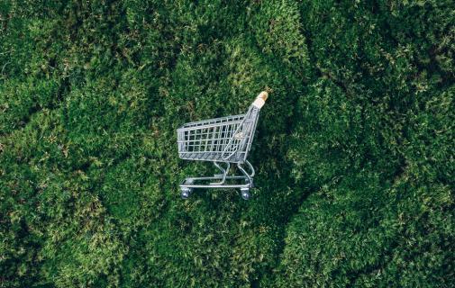 sustenabilitatea in retailul alimentar