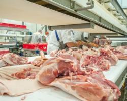 Procesatori de carne